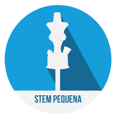 Stem_Pequenas