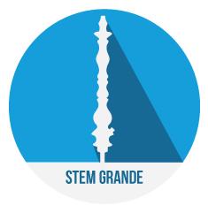 Stem_Grande